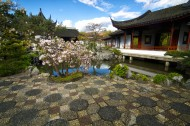Beauty Under Foot - Chinese Garden - Julius Reque.jpg