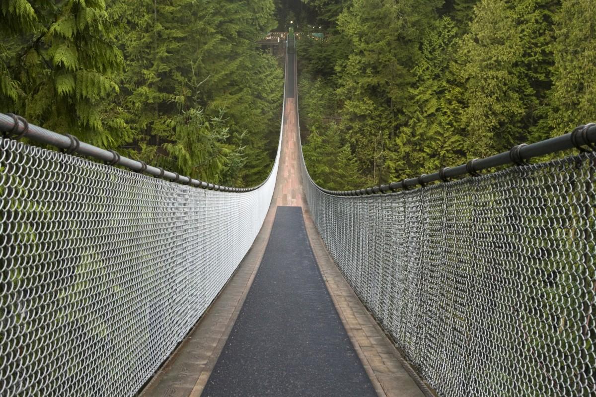 Afbeeldingsresultaat voor capilano suspension bridge