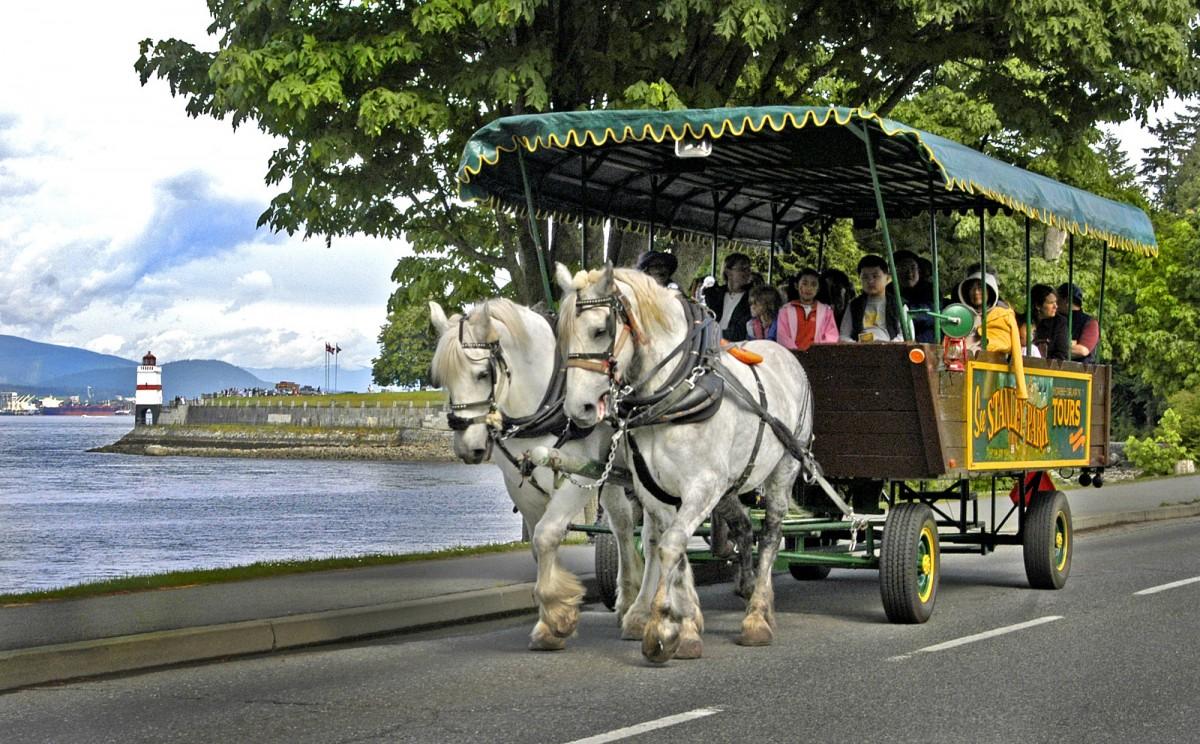 Wagon Tours