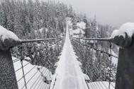 IMG_0465-2---Snowy-bridge.jpg