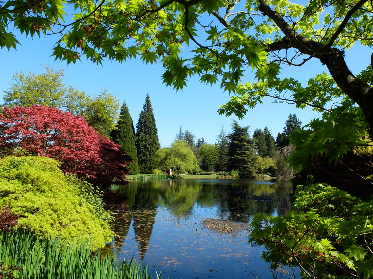 botanical garden importance essay Or plants or plant specimens at the botanic gardens or managed land for scientific  or  important space this is for melbourne and victoria a  table 3: summary  of employment levels as at june 2015 and june 2014 table 4:.