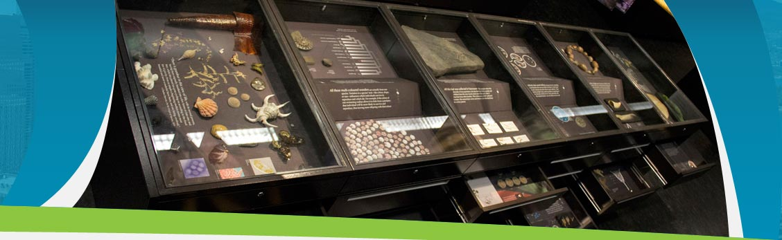 family, bones, fossils, tours, exhibitions