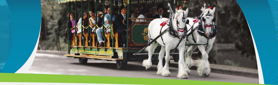 Stanley Park, horse, tours, nature